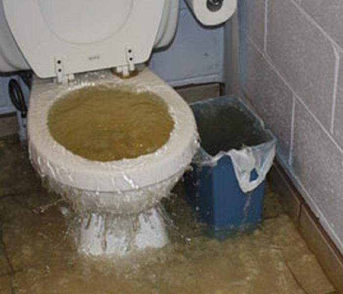 Toilet overflow in Colorado Springs
