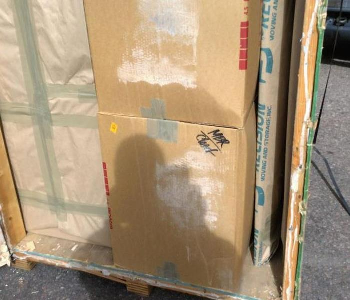 Colorado Springs, shipping crate with mold growth